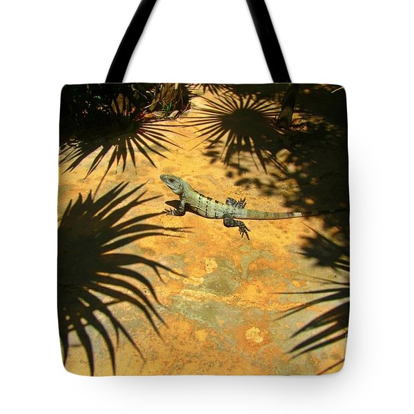 Soaking Up The Rays Tote Bag by Halifax photographer John Malone