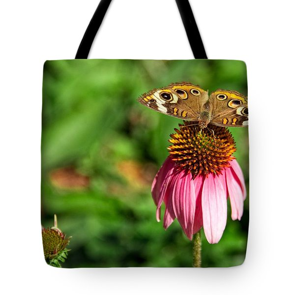 Soaking Up The Sun Tote Bag by Dave Files