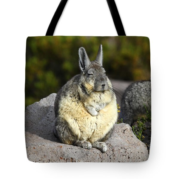 Soaking Up The Sun Tote Bag