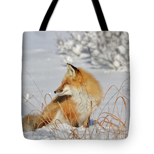 Soaking Up The Sun Tote Bag by Sami Martin