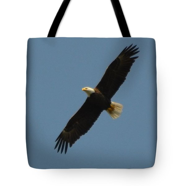 Soaring Bald Eagle Tote Bag by Jeff at JSJ Photography