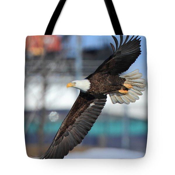Tote Bag featuring the photograph Soaring Eagle by Coby Cooper