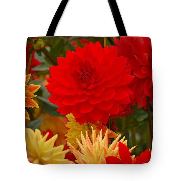 Tote Bag featuring the photograph Sockeye And Upmost Dahlias by Jordan Blackstone