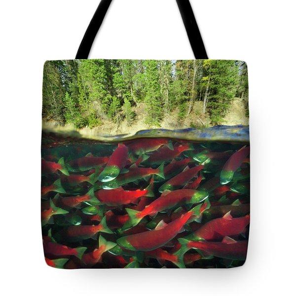 Sockeye Salmon Run Tote Bag