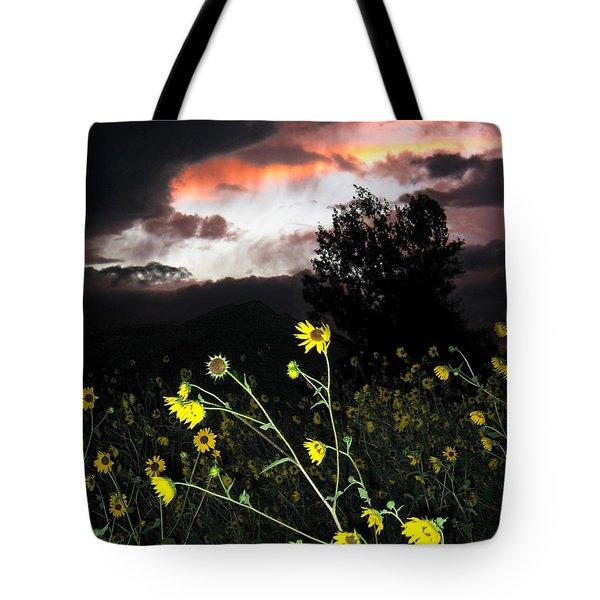 Socorro Sunset Tote Bag by Steven Ralser