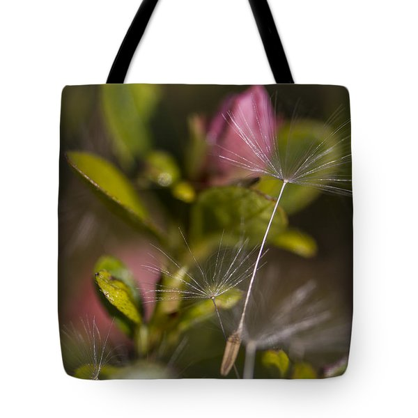 Tote Bag featuring the photograph Soft And Delicate by Windy Corduroy
