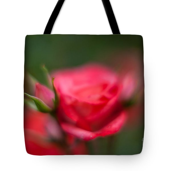 Soft And Peaceful Tote Bag by Mike Reid