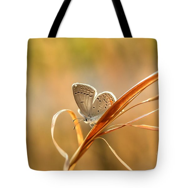Soft Baby Blue Tote Bag by Debbie Green