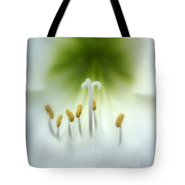 Soft Beauty Tote Bag by Lynn Sprowl