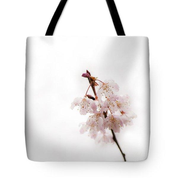 Soft Cherry Plum Tote Bag by Anne Gilbert
