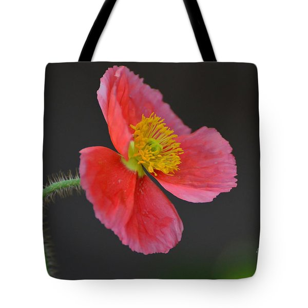 Soft Tote Bag by Debby Pueschel