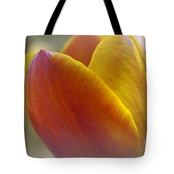 Tote Bag featuring the photograph Soft Details  by John S