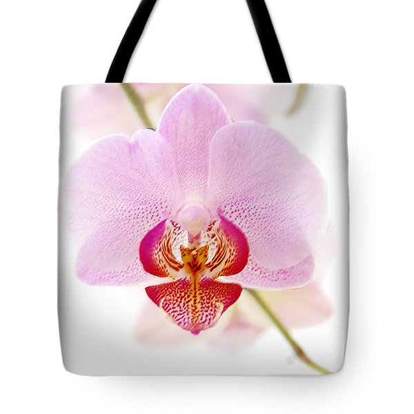 Soft Orchid Tote Bag by Hannes Cmarits