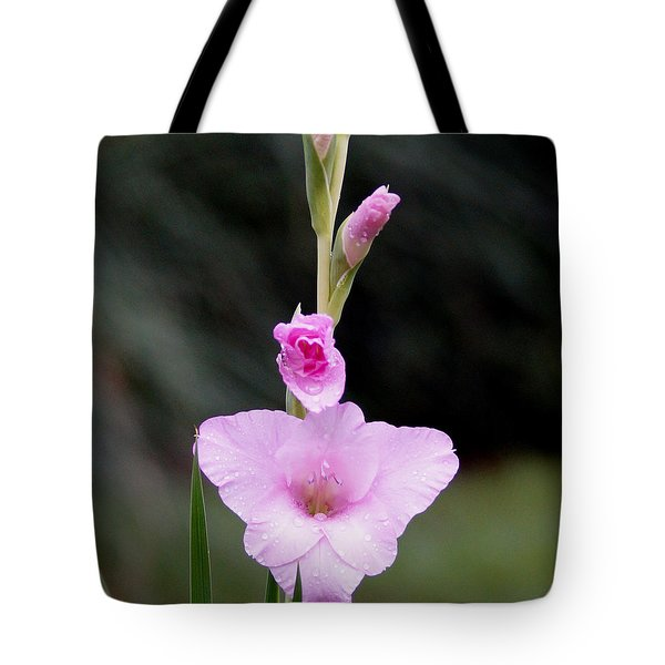 Soft Pink Glad Tote Bag by Kim Pate