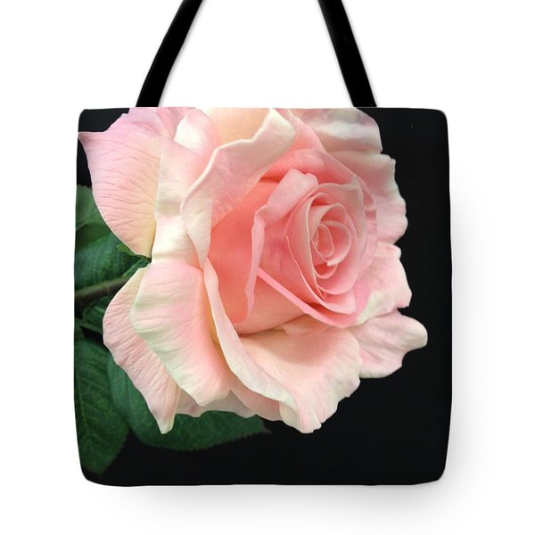 Tote Bag featuring the photograph Soft Pink Rose 1 by Jeannie Rhode