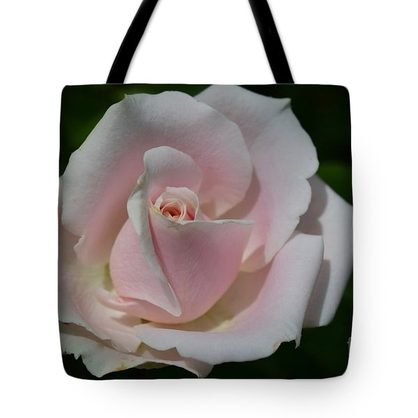 Tote Bag featuring the photograph Soft Pink Rose by Jeannie Rhode