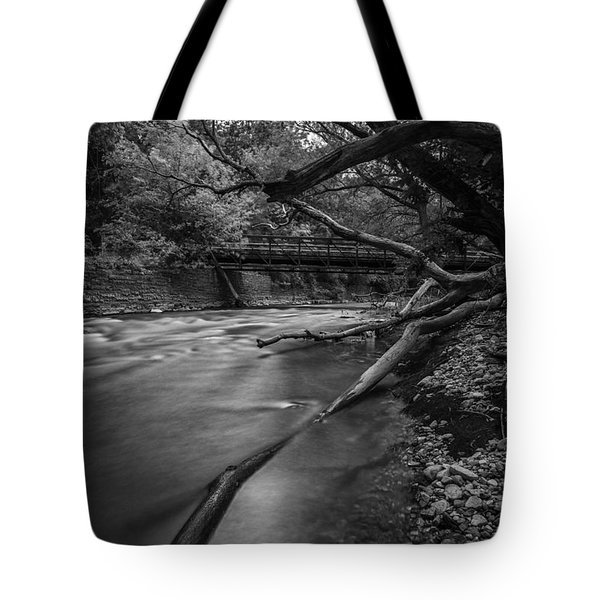 Soft Reflected Tote Bag by CJ Schmit