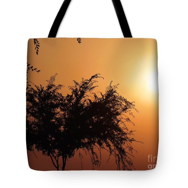 Soft Sunrise Tote Bag
