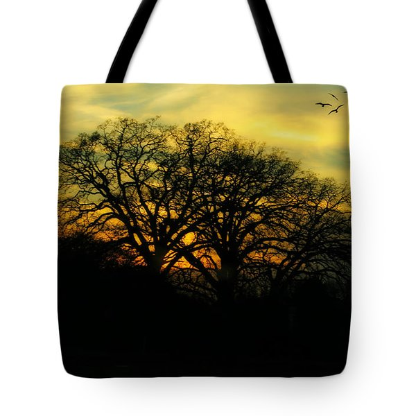 Soft Sunset Tote Bag by Joan Bertucci