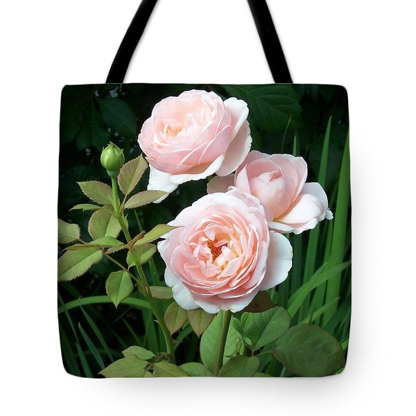 Soft Trio Tote Bag