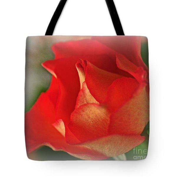 Soften Rose Tote Bag