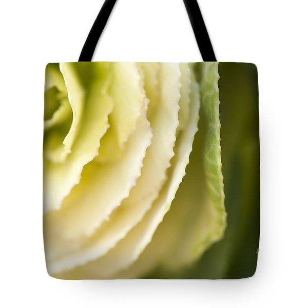 Softly Green Tote Bag by Anne Gilbert