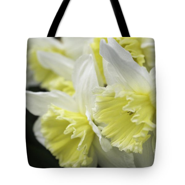 Softly Spring Tote Bag by Arlene Carmel