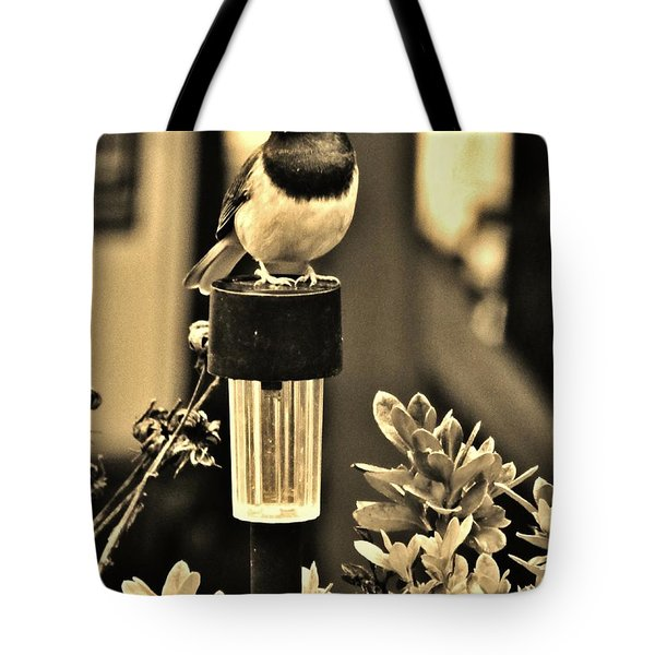 Tote Bag featuring the photograph Solar Light Sitting by VLee Watson