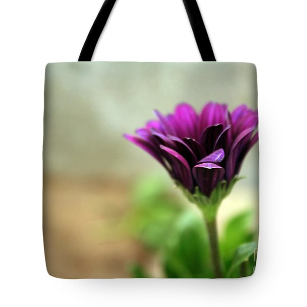 Solitaire Tote Bag by Chris Anderson