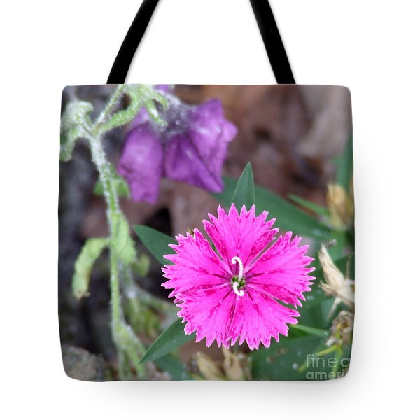 Tote Bag featuring the photograph Solitary by Andrea Anderegg