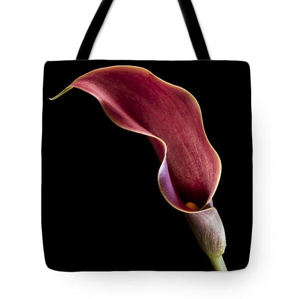 Solitary Calla  Tote Bag by Jean Noren