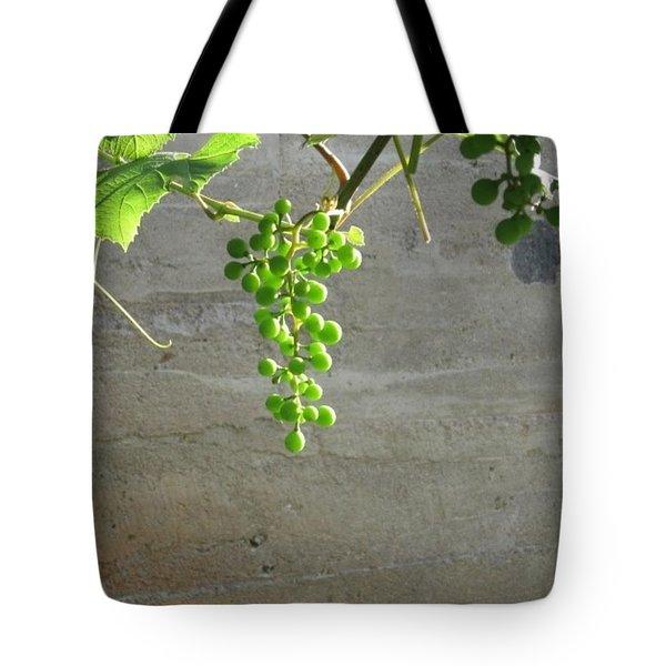 Solitary Grapes Tote Bag