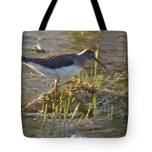 Solitary Sandpiper 2 Tote Bag by James Petersen