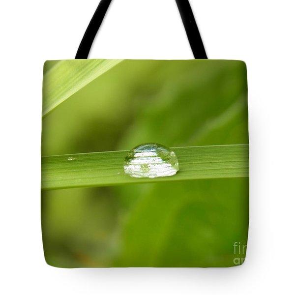 Solitude  Tote Bag by Agnieszka Ledwon