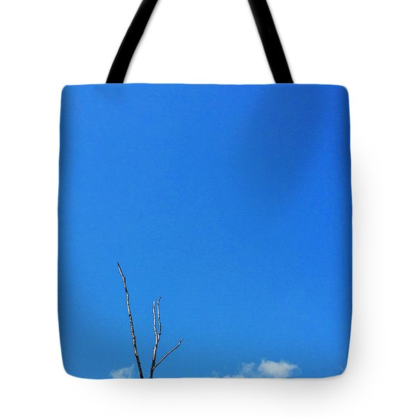 Solitude - Blue Sky Art By Sharon Cummings Tote Bag