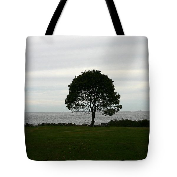 Solitude Tote Bag by Denyse Duhaime