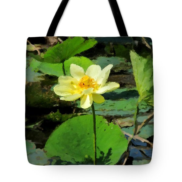 Solitude Tote Bag by John Freidenberg