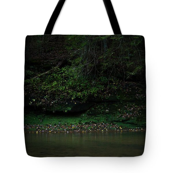 Solitude Tote Bag by Shane Holsclaw