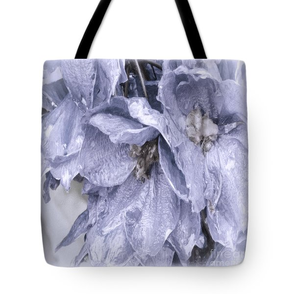 Solomons Proverbs Tote Bag