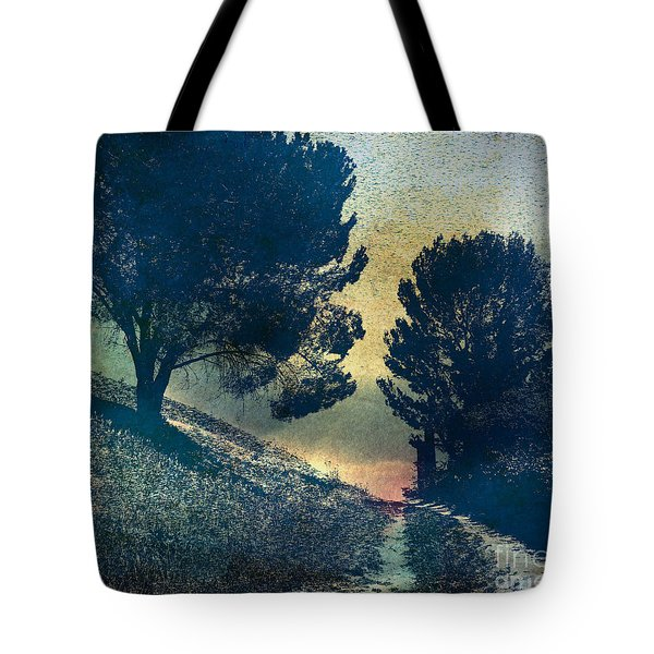 Somber Passage Tote Bag by Bedros Awak
