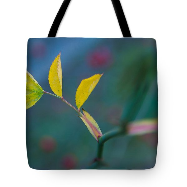 Some Color Tote Bag by Andreas Levi