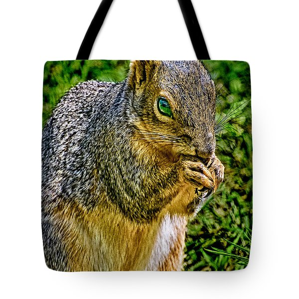 Some Squirrels Are Big Tote Bag
