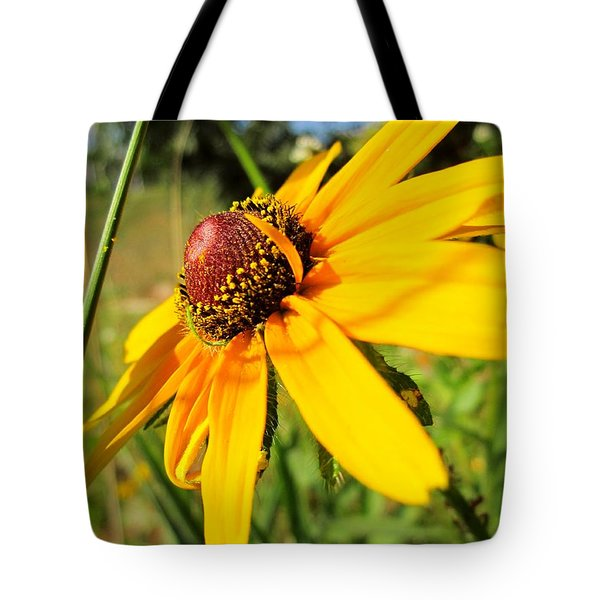 Something Out Of Place Tote Bag