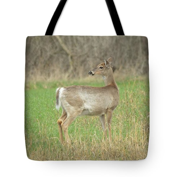 Somethings Caught His Attention Tote Bag by Dacia Doroff