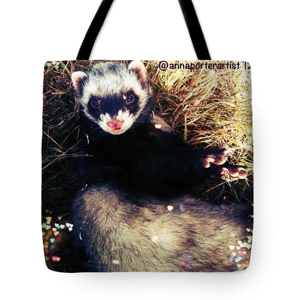 Sometimes We Like To Roll In The Straw #ferrets #pets Tote Bag