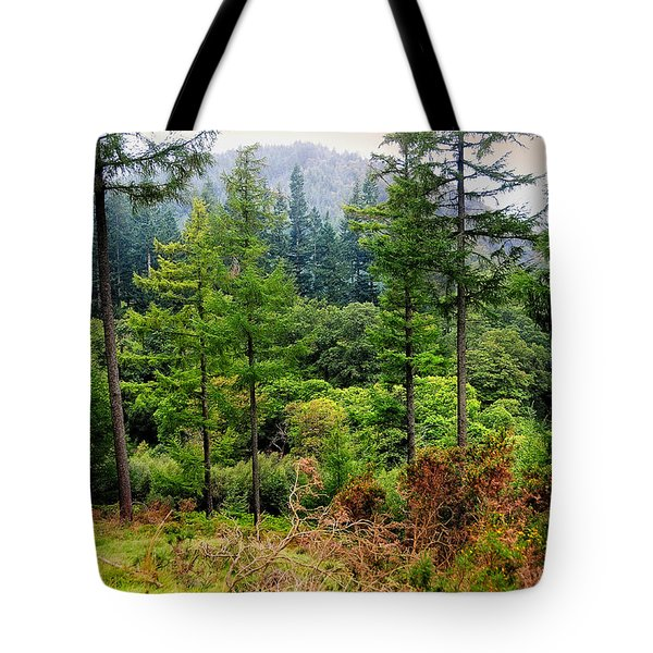 Somewhere In The Forest Over Upper Lake. Glendalough. Ireland Tote Bag by Jenny Rainbow