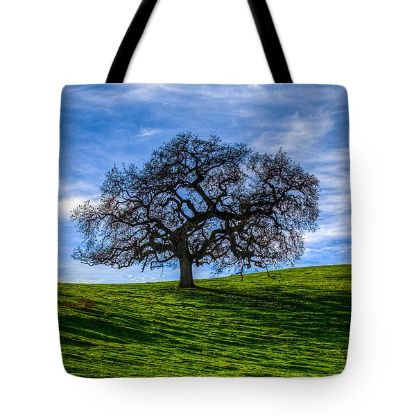 Sonoma Tree Tote Bag by Chris Austin