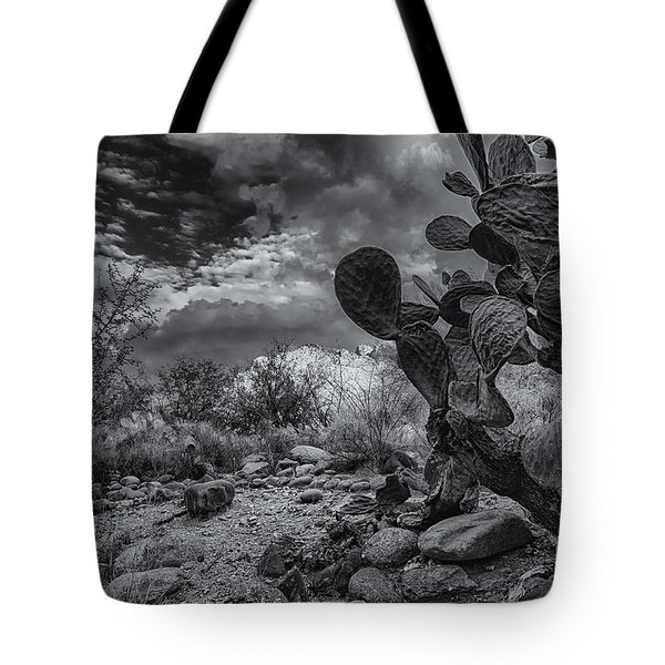 Tote Bag featuring the photograph Sonoran Desert 15 by Mark Myhaver