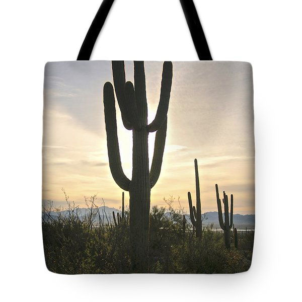 Sonoran Desert View Tote Bag
