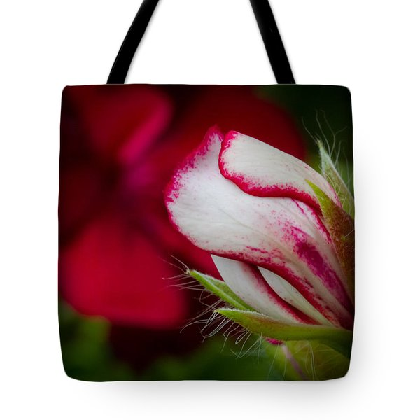 Sooon.... Tote Bag by Andreas Levi